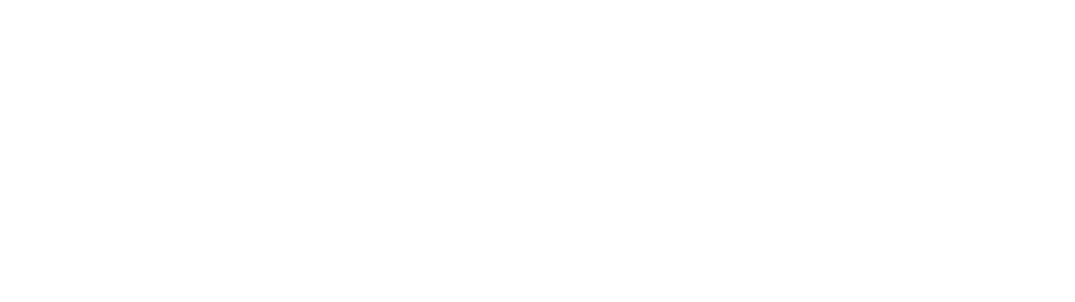 Partners in Performance | Global management consulting